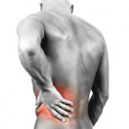 Lower Back Exercise Therapeutic